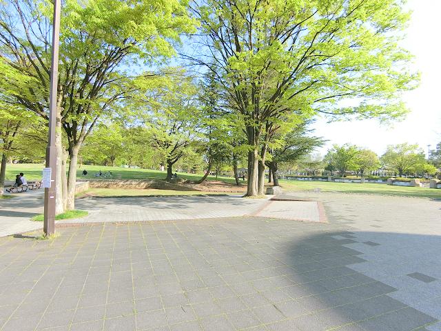 長野駅近くの若里公園は緑いっぱい