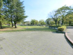 緑豊かな公園、若里公園の写真