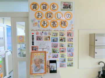 【店頭リニューアル】芹田不動産の店頭をリニューアルしました♪皆さんの写真も飾らせて頂いてます!