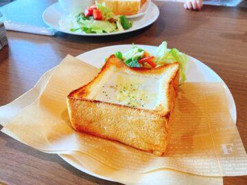 """これぞパンです This is a """"PAN""""!!"""