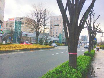 長野駅周辺