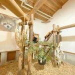 茶臼山動物園(ちゃうすやまどうぶつえん)
