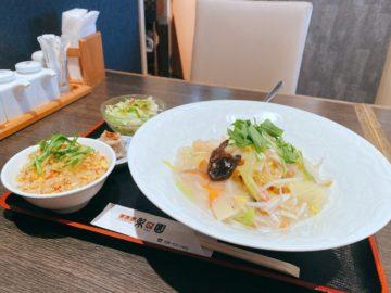 【中華料理 梨園(りえん)】美味しい海鮮あんかけ焼きそばを食べる!お洒落で女子受けもよさそう!