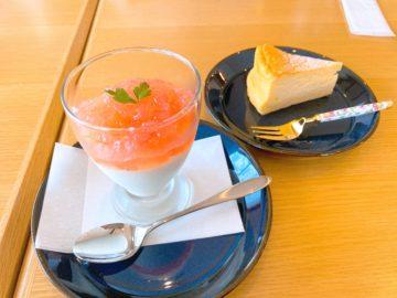 【Cafeかわせみ(カフェカワセミ)】2020年3月新規オープン!長野市の柳原駅近くにある素敵なカフェのご紹介!
