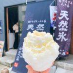 中町氷菓店 長野市かき氷