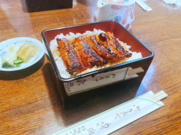 【炭火焼うなぎ専門店 浜名屋(はまなや)】土用の丑の日、美味しいうな重を食べよう!