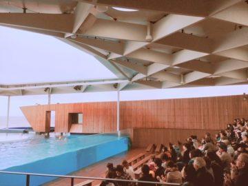 上越市立水族博物館うみがたりリニューアルオープン