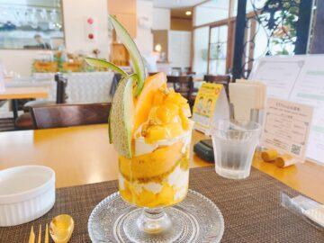 【KENzo Cafe&Bar(ケンゾカフェアンドバール)】夏季限定☆テンション上がるスペシャルマンゴーパフェ!