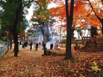 栗田神社焼き芋大会
