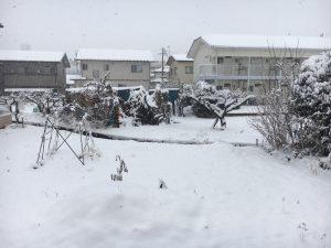 菅平の山に雪が降り始めました。長野初雪、今年は暖冬か?2018年11月24日の景色の撮影です。